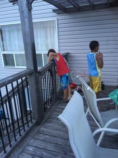 BFFs hanging on the deck.