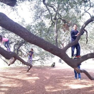 Cool climbing.