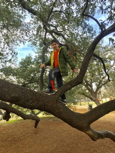 Ryan deciding to climb the tree (with a slight push from Mom.)
