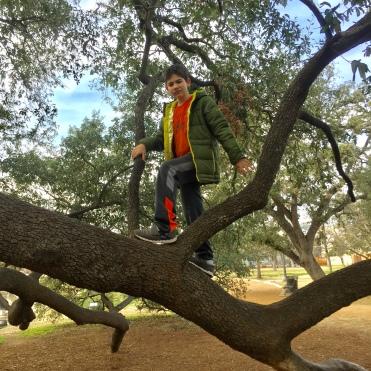 Ryan deciding to climb the tree (with a slight push from Mom.)