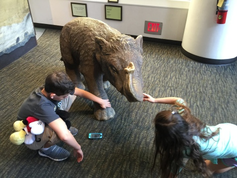 Checking out a baby mammoth.