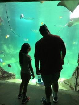 Fish! It is Sea World!