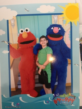 Elmo, Ryan, and Grover by the professional.